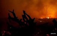 В Калифорнии растет количество жертв лесных пожаров
