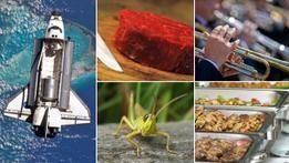 Еда будущего: чем мы будем питаться через 20 лет?