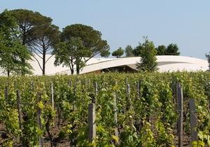 По рецептам Вергилия. В Италии хотят изготовить аутентичное вино древних римлян
