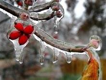 Синоптики обещают заморозки накануне Пасхи