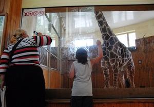 СМИ: Мэрия ищет нового директора Киевского зоопарка