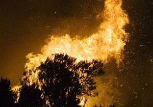 В Запорожье горели 6,5 га хвойного леса в заповеднике Великий Луг