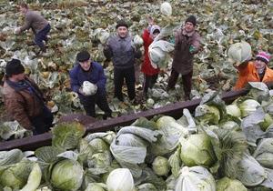 МВФ не дал Беларуси денег, посоветовав  смелые  реформы - новости беларуси - лукашенко