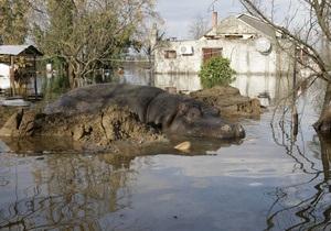 В Черногории из зоопарка уплыл бегемот