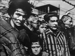 СМИ: Еврейской организации запретили рассказывать львовским школьникам о Холокосте