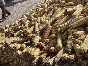 ЕБРР: Украина будет мировым поставщиком продуктов питания