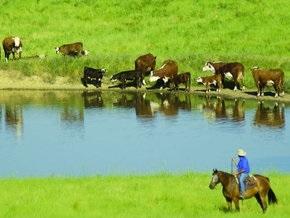 Австралийских фермеров подключат к скоростному интернету лазером