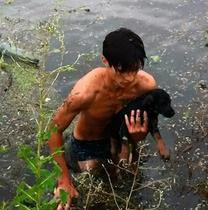 В Одессе юноша, рискуя жизнью, спас щенка во время ливня