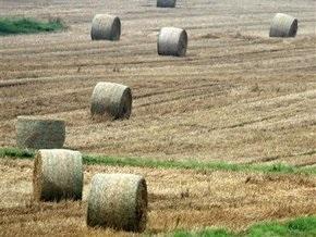 Кабмин повысил вдвое минимальную плату за сельскохозяйственные земли