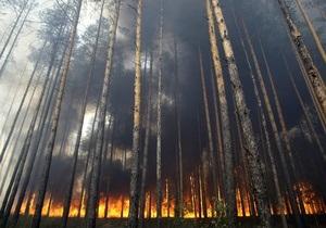 Площадь пожаров в Сибири за сутки увеличилась в пять раз