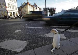 Атеисты Копенгагена просят мэрию выделить деньги на сектор для погребения неверующих