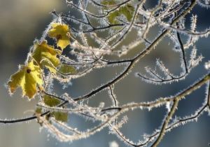 В Украине ожидаются первые заморозки