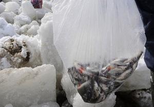 Минприроды намерено ввести мораторий на промышленный лов рыбы в Киевском море