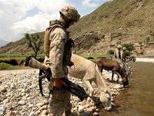 США отправят в Афганистан дополнительные войска