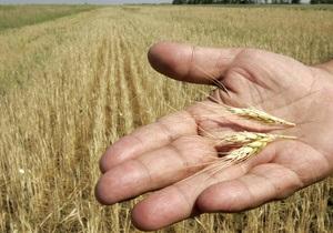 Метеорологи значительно повысили прогноз урожая зерновых в Украине