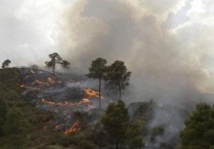 В России из-за жары горят леса