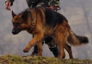 Собака помешала гражданину Украины вывезти в Россию два килограмма взрывчатки
