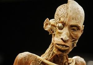 Немецкий художник намерен продавать мумифицированные трупы через интернет