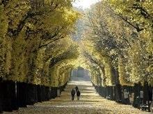 В Украину пришла осень