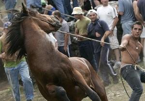 Сотрудники МЧС спасли коня