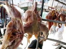 Украина запретила ввозить птицу из Германии