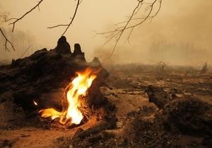 Украина предложила России помощь в реабилитации пострадавших от пожаров