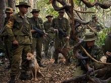 В Мьянме за Рэмбо IV можно сесть в тюрьму на семь лет