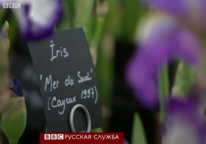 100 лет выставке в Челси: буйство цветов и ароматов