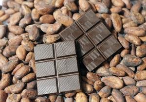 Регулярное употребление какао может предотвратить проблемы с памятью  в старости