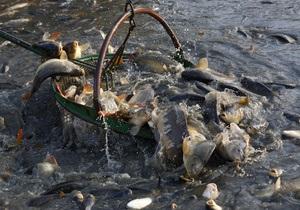 Паразиты речной рыбы могут спровоцировать рак печени - ученые