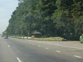 Кабмин разрешил менять целевое назначение лесных земель под строительство дорог