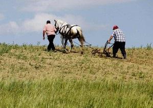 Мужчины в украинских семьях теряют роль добытчиков - исследование