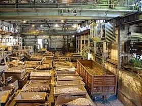 В Раде заявили о возможности возврата в госсобственность Запорожского завода ферросплавов