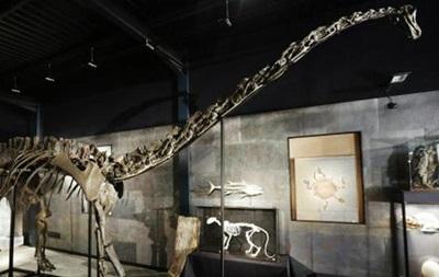 Скелет диплодока ушел с молотка за 400 тысяч фунтов