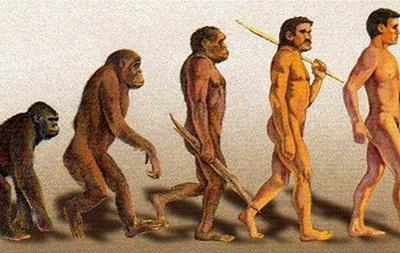 Ученые нашли способ ускорить эволюцию