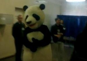 В Киеве один из избирателей проголосовал в костюме панды