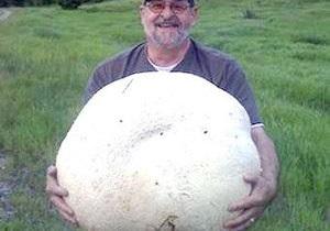 Житель Канады нашел 26-килограммовый гриб-дождевик