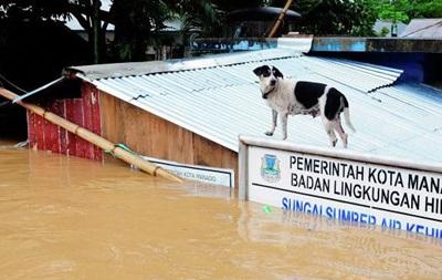 Из-за наводнения в Индонезии погибли 13 человек