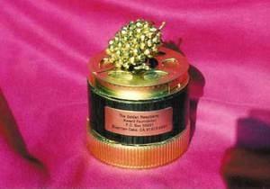 Золотая малина: Сумерки собрали семь антипремий Золотой малины