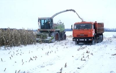 Погодные условия способствуют хорошему урожаю – Арбузов