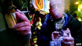 В Голландии  крепкую  коноплю приравняют к кокаину