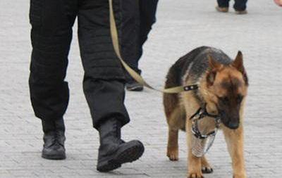 Сотрудники СБУ нашли оружие и взрывчатку в центре и пригороде Киева