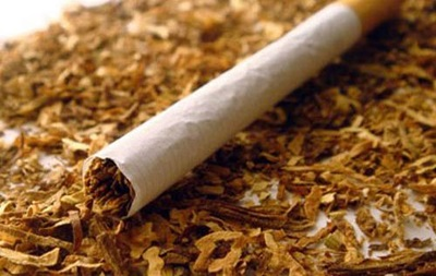 Ученые обнаружили в табаке механизм борьбы с раковыми клетками