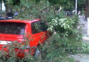 Ураган в Одессе: поваленные деревья заблокировали движение автомобилей, троллейбусов и трамваев