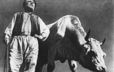 В Киеве покажут Землю Довженко в сопровождении Даха Браха