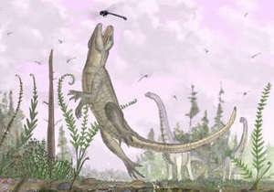 Ученые обнаружили останки древнего крокодила с зубами млекопитающего