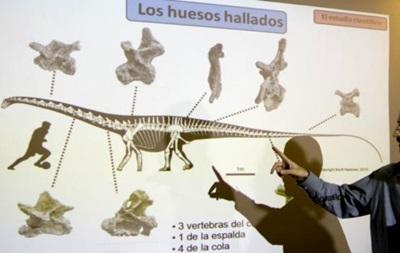 В Аргентине найдены кости самого большого динозавра в мире