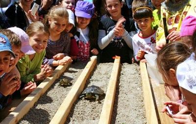 В Одесском зоопарке пройдут черепашьи бега