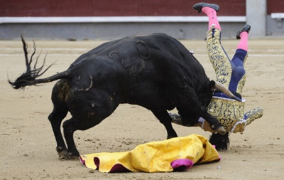 В Испании отменили корриду: быки забодали троих матадоров