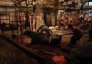 Украина подготовит новый список мясомолочных предприятий для инспектирования Таможенным союзом